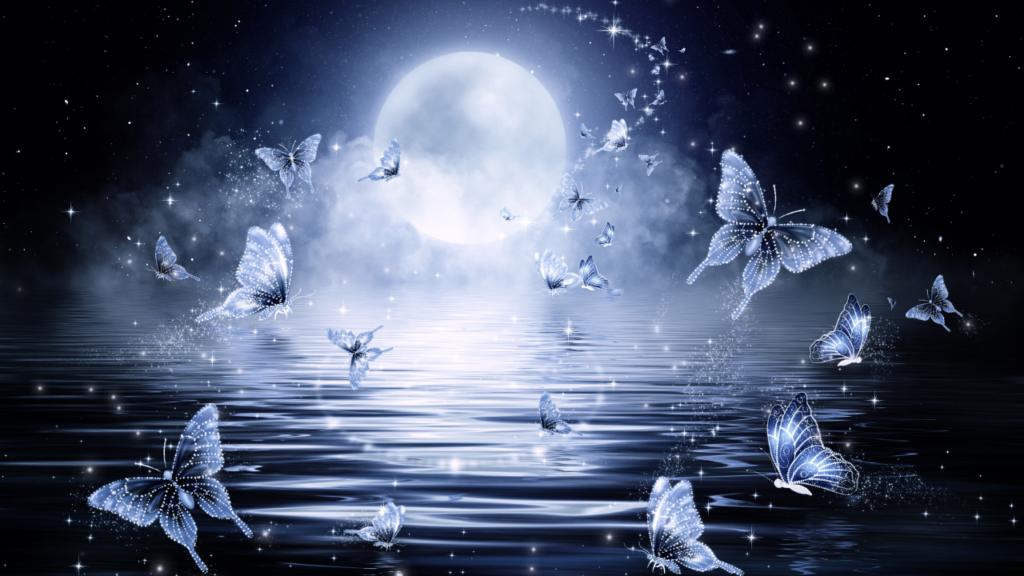 月と蝶   占いと心理が学べるスクールセラス